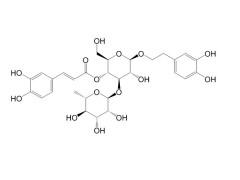 毛蕊花糖苷 CAS:61276-17-3-- 成都钠钶锂生物科技有限公司