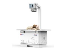 简析宠物DR在宠物疾病预防和治疗中的作用-- 南京普爱医疗设备股份有限公司
