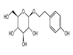 红景天苷-- 苏州麦轮生物科技有限公司