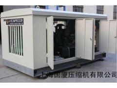 350公斤空压机试压用250公斤空气压缩机-- 上海国厦压缩机有限公司